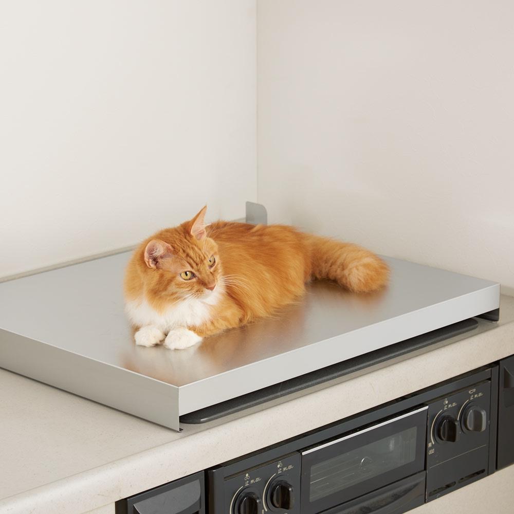 猫の飛び乗り防止 ビルトインガスコンロカバー 幅75cm用 725205