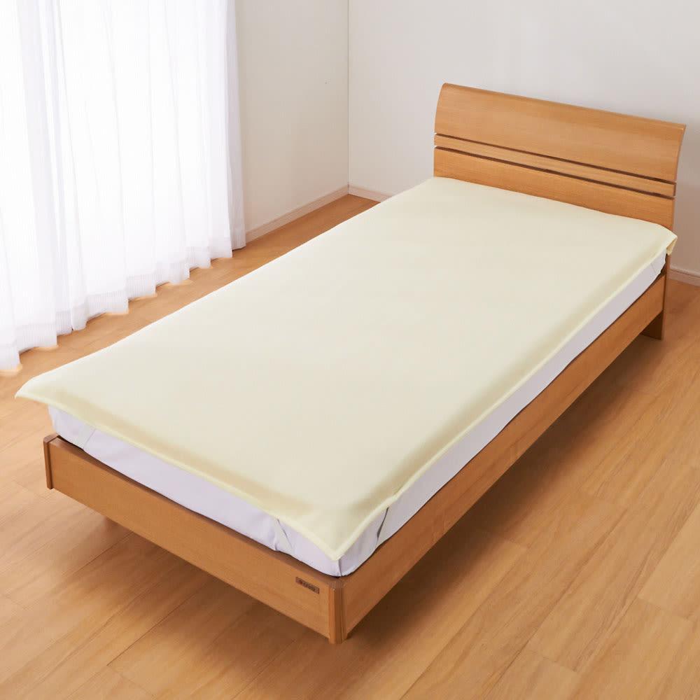 セミダブル (洗えるホワイトカシミヤ敷き毛布) 725420