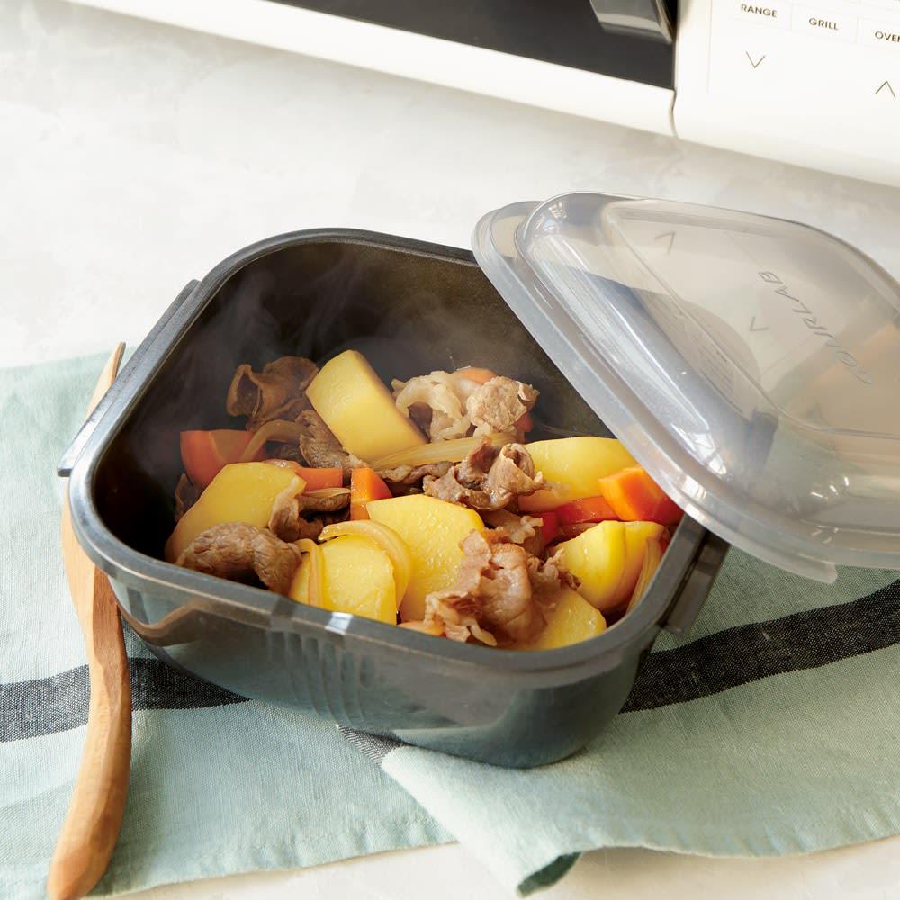 キッチン 家電 鍋 調理器具 電子レンジ調理器 グルラボ プラス IWATANI イワタニ E13003