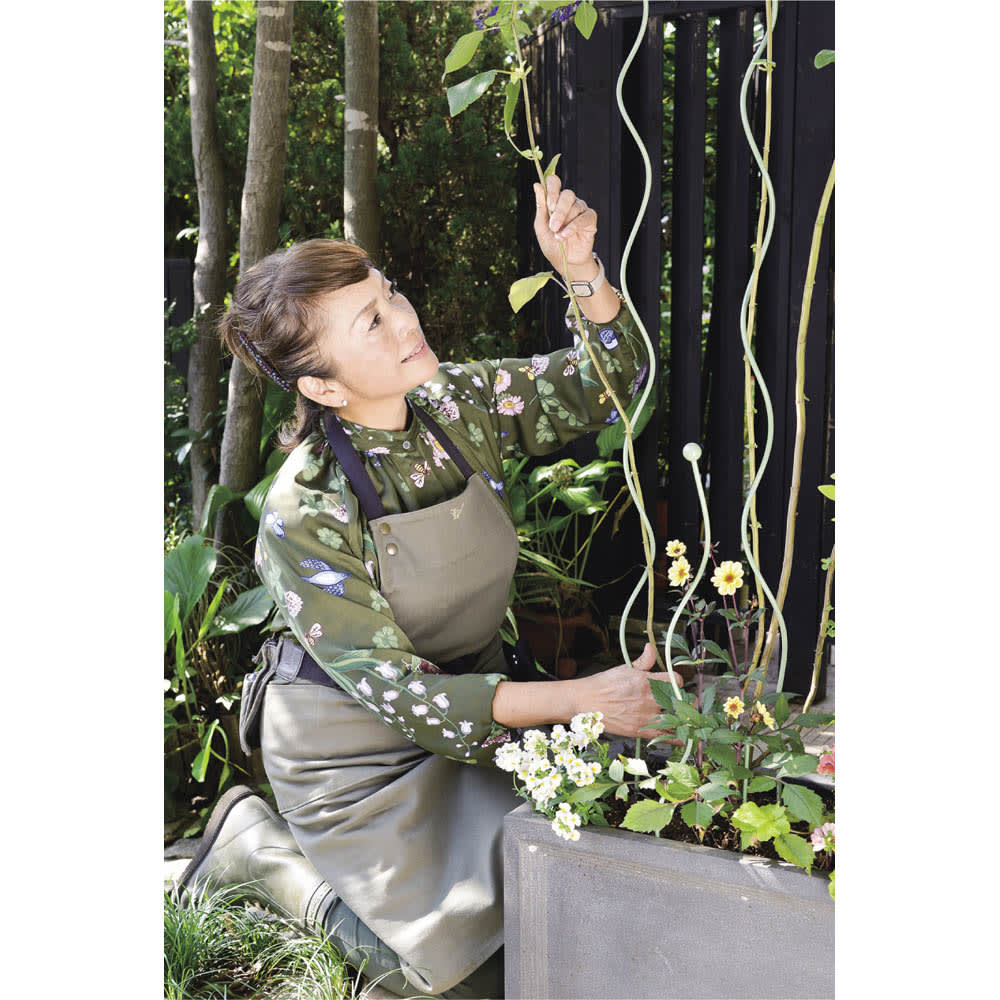 スパイラルサポートセット M 4本組 茎のやわらかな植物向き。支柱に沿って茎を絡めるだけでOK。