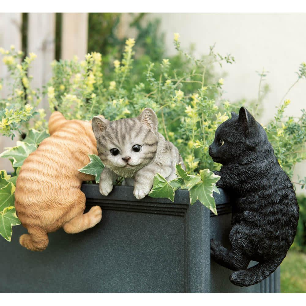 ひっかけ子猫 左から(ア)茶トラ (イ)グレー (ウ)黒