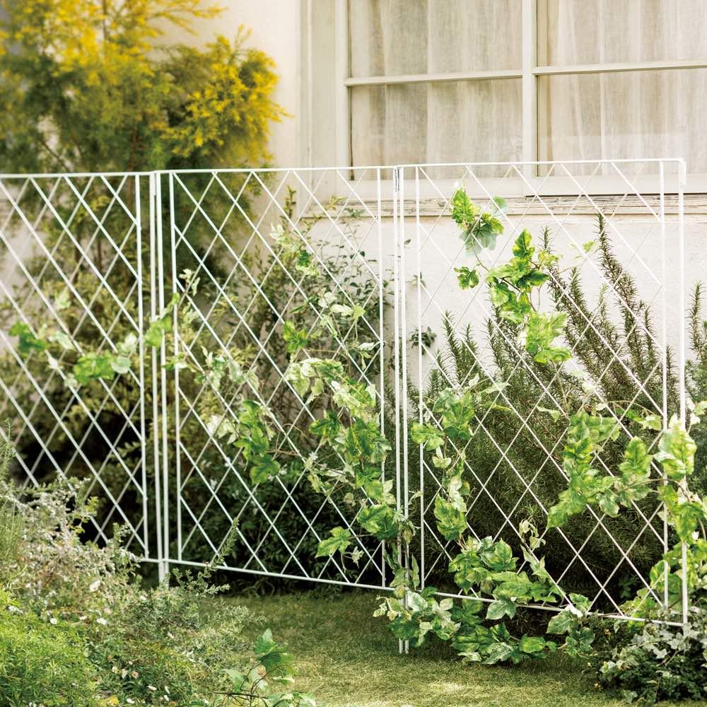 境界線に!ガーデンフェンス 3枚セット (イ)ホワイト