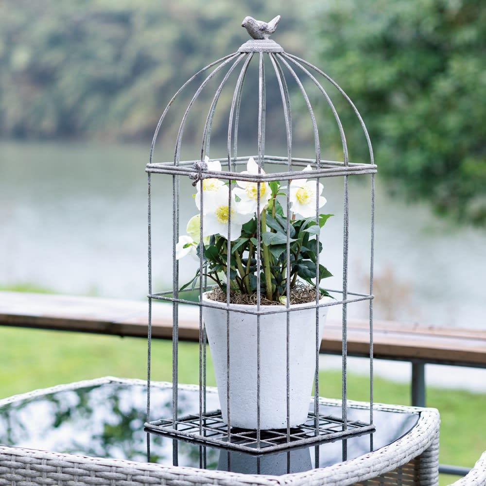 鳥かごプランタースタンド 鳥かごの部分だけを使用することも可能です。