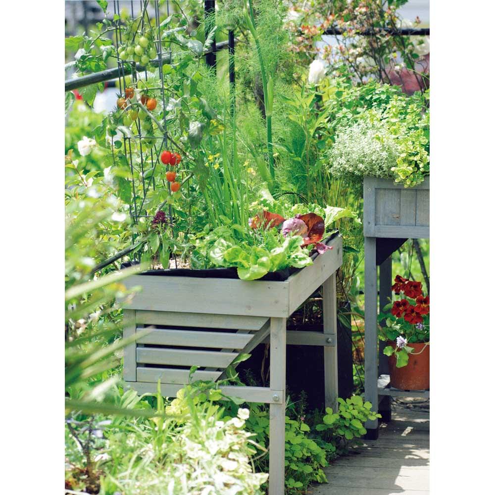 菜園プランター ベジトラグ バルコニーサイズ (イ)グレーウォッシュ
