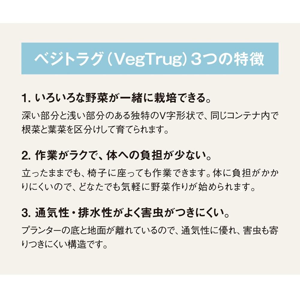 菜園プランター ベジトラグ 省スペースサイズS ベジトラグ(VegTrug)3つの特徴