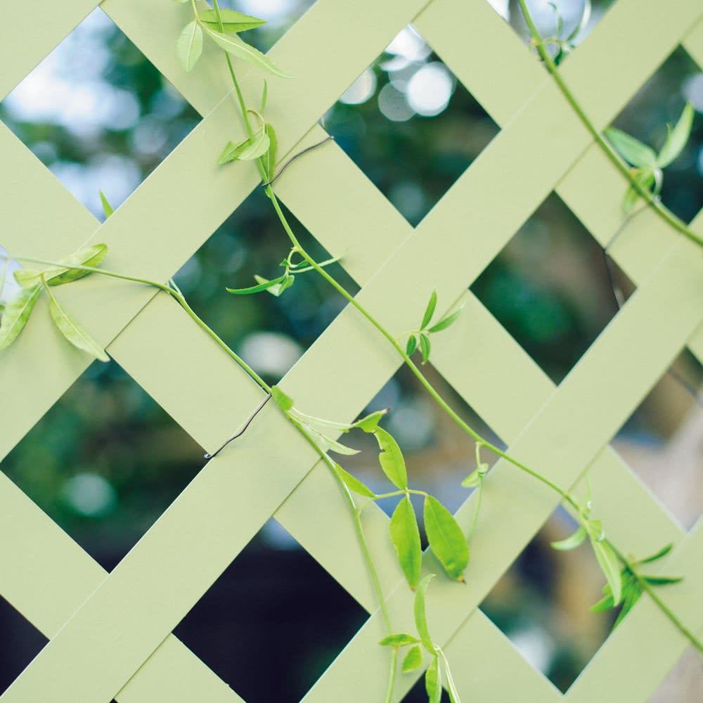 頑丈ラティスフェンス〈セージグリーン〉 高さ150cm モッコウバラやクレマチスのつるを絡ませ、花を咲かせても素敵です。
