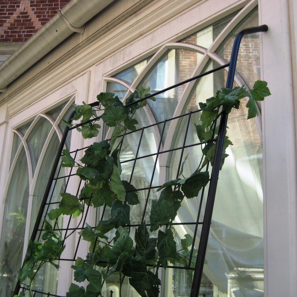 アイアングリーンカーテン トレリス お得な2枚組 つたが絡みやすい細いトレリス
