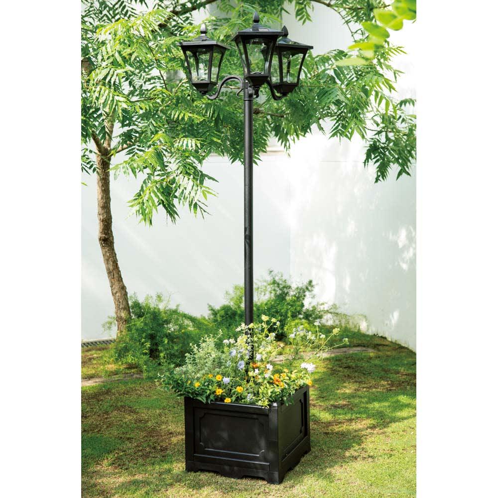 プランター付きソーラーライト 3灯 お花たっぷりの寄せ植えも絵になります。