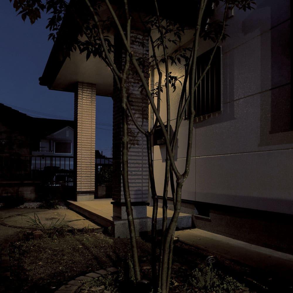 工具不要 簡単に本格ライトアップ! ひかりノベーション基本セット2個組 (ア)木のひかり BEFORE 角度が自由に調整できるライトアップで、影をつくり、樹木を美しく引き立てます。