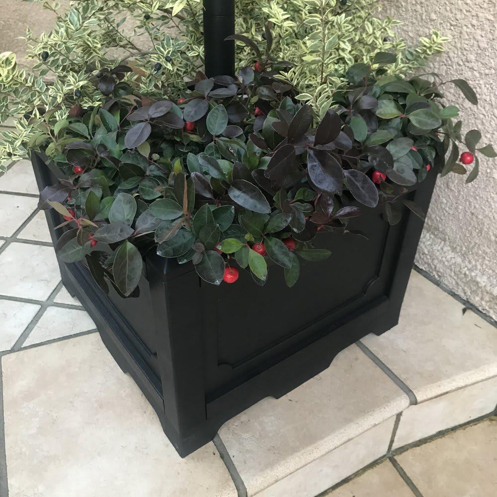 プランター付きソーラーライト 1灯 自立するので、土でもコンクリートでもどこにでも安心して置けます。