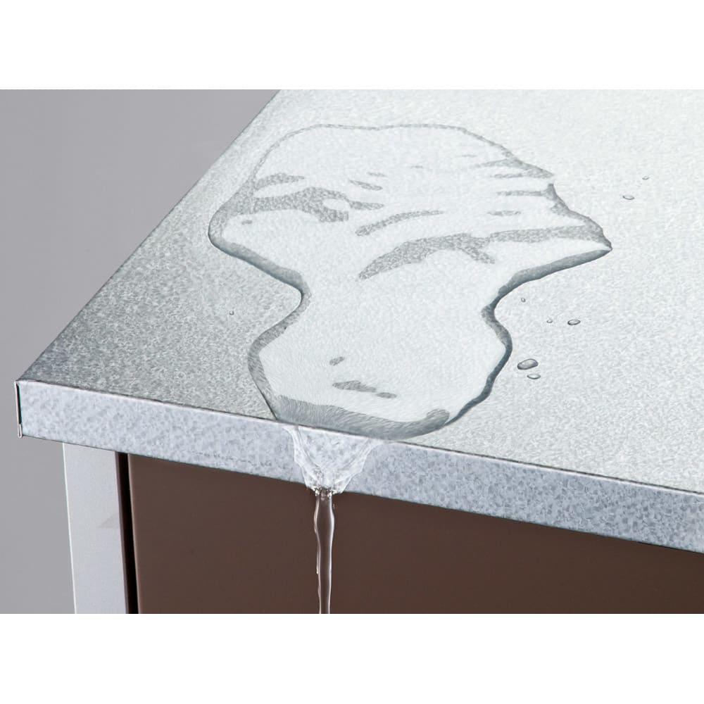 ガルバ製物置 レギュラータイプ 幅91.5高さ95cm ひさし付きの天板が、上方からの雨水の侵入を防ぎます。