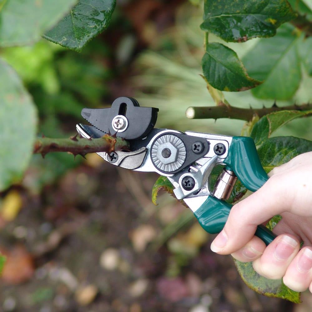 Burgon&Ball(バーゴン&ボール)ローズプルーナー(バラ用剪定はさみ) RHS Rose Pruner 触りたくない棘のあるバラもしっかりホールドしてくれます。
