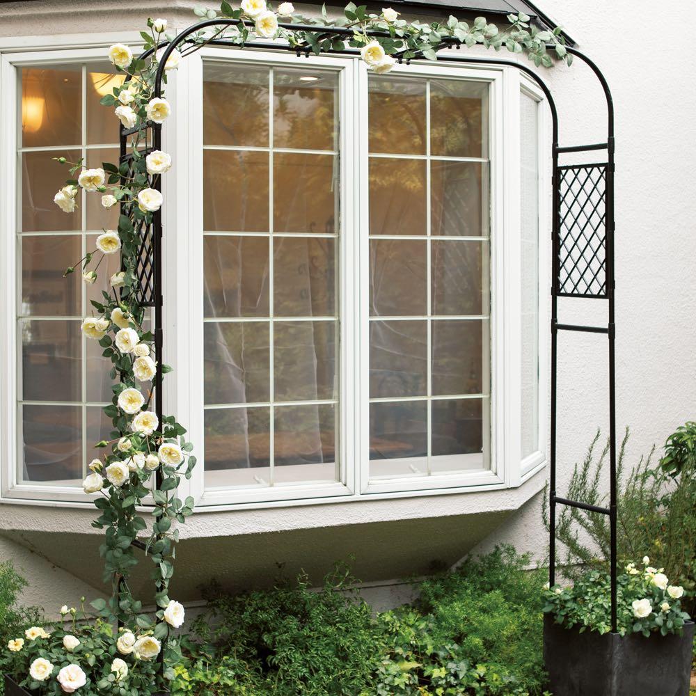 ガーデニング フラワー ガーデニング用品 エクステリア ガーデンアーチ 幅と高さの調節ができるアーチ G81106