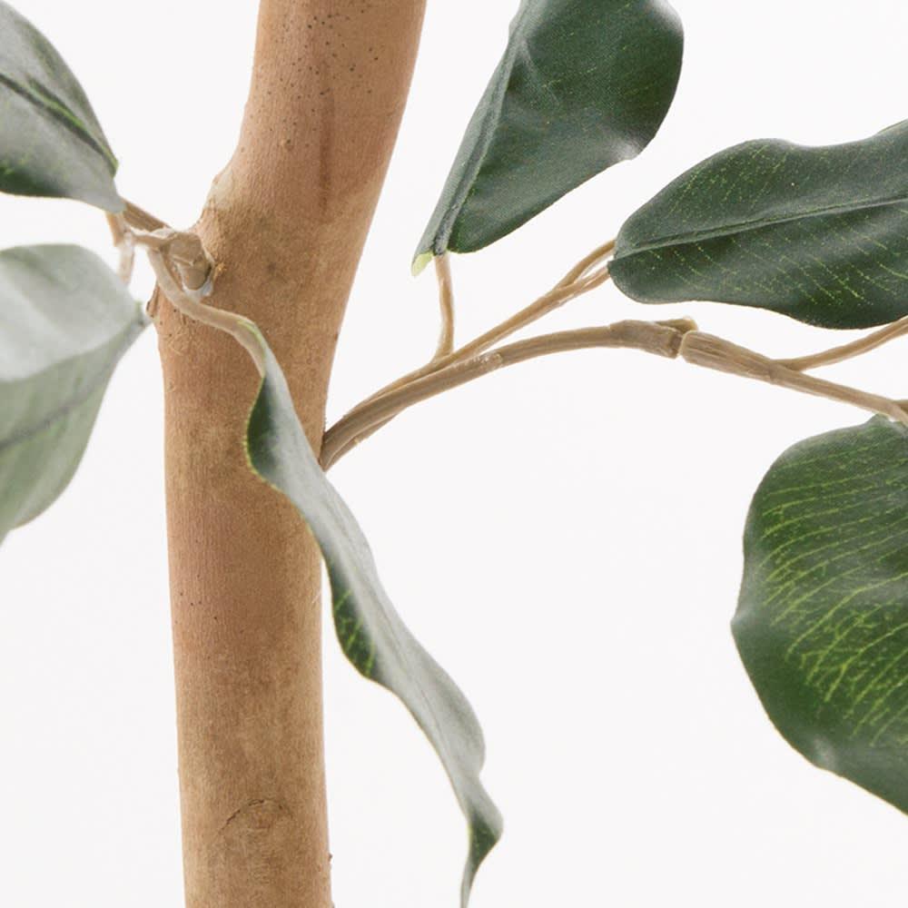 目隠しフェイクベンジャミン 高さ160cm 幹には贅沢にも天然木を使用しています。