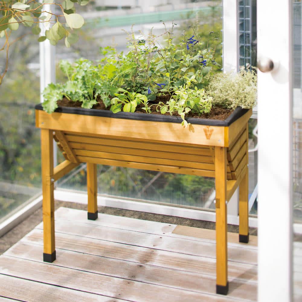 菜園プランター ベジトラグ バルコニーサイズ 作業のしやすさはそのまま、日本の住宅事情によりマッチしたバルコニーサイズが登場!子供も作業しやすい高さで置く場所を選びません。花壇代わりとしても。