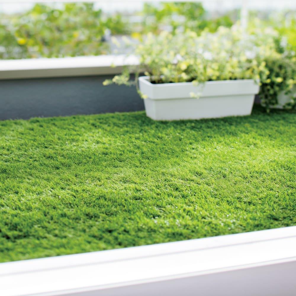 防草シート付きロール芝 使用例 バルコニーにもおすすめ。