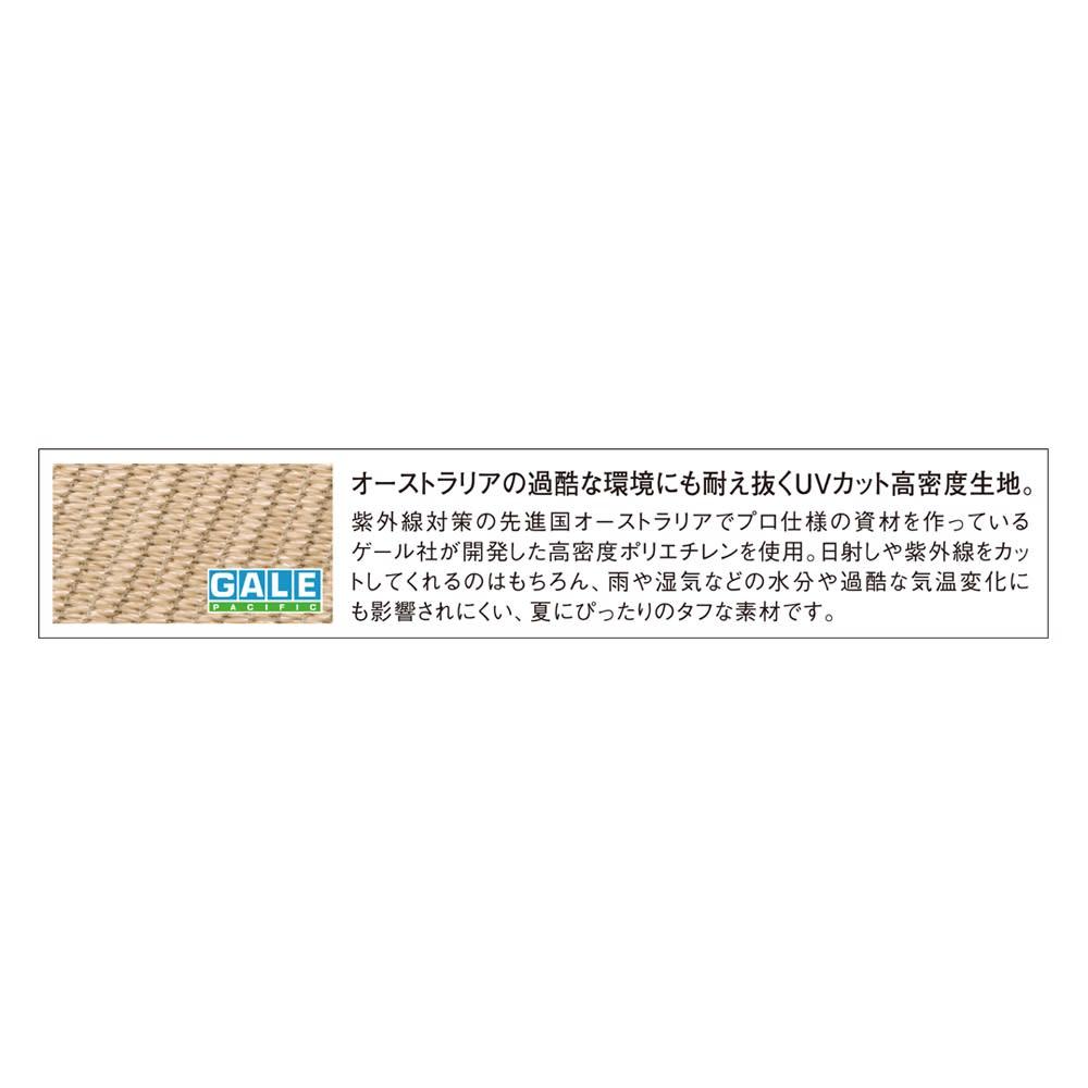 サマーオーニング タープ 約200×400cm