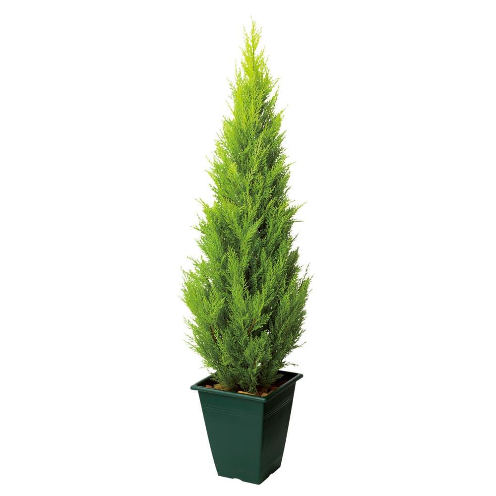 高さ90cm(人工観葉植物ゴールドクレスト) ※写真は高さ150cmタイプです。 ※お届けの鉢のデザインは若干異なります。