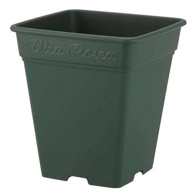 高さ150cm(人工観葉植物ゴールドクレスト) お届けの商品は、こちらの鉢を使用しています。