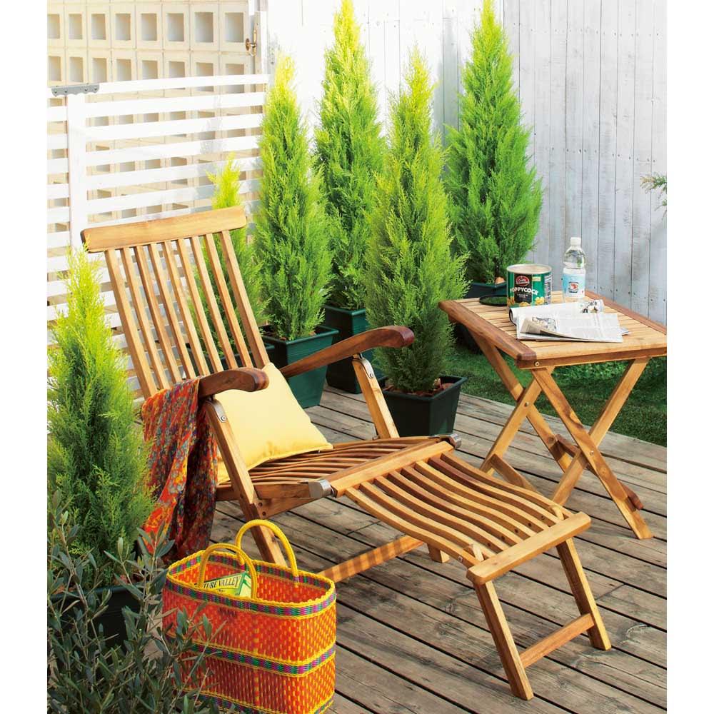 高さ180cm(人工観葉植物ゴールドクレスト) サイズを違うものをランダムに置いても素敵。