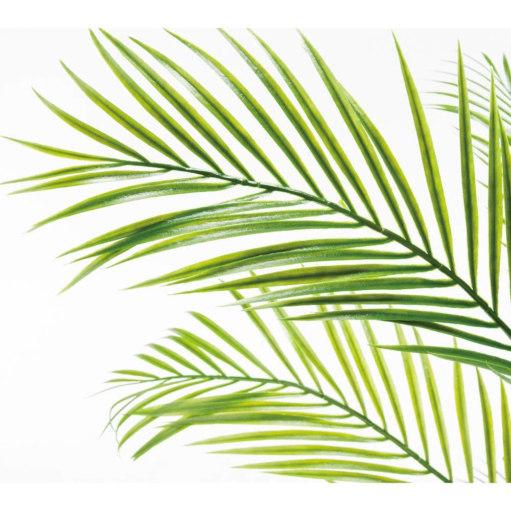 人工観葉植物アレカパーム 高さ155cm しなやかさのある細長い葉やしっかりした幹はリアル感たっぷり。フェイクなので永く美しい葉形が楽しめます。