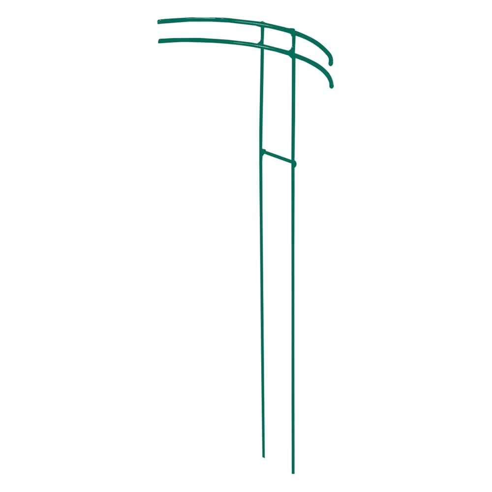 プランツサポートスーパービッグ2本組 (イ)グリーン 新色 ご要望にお応えして主張しないグリーン色追加!