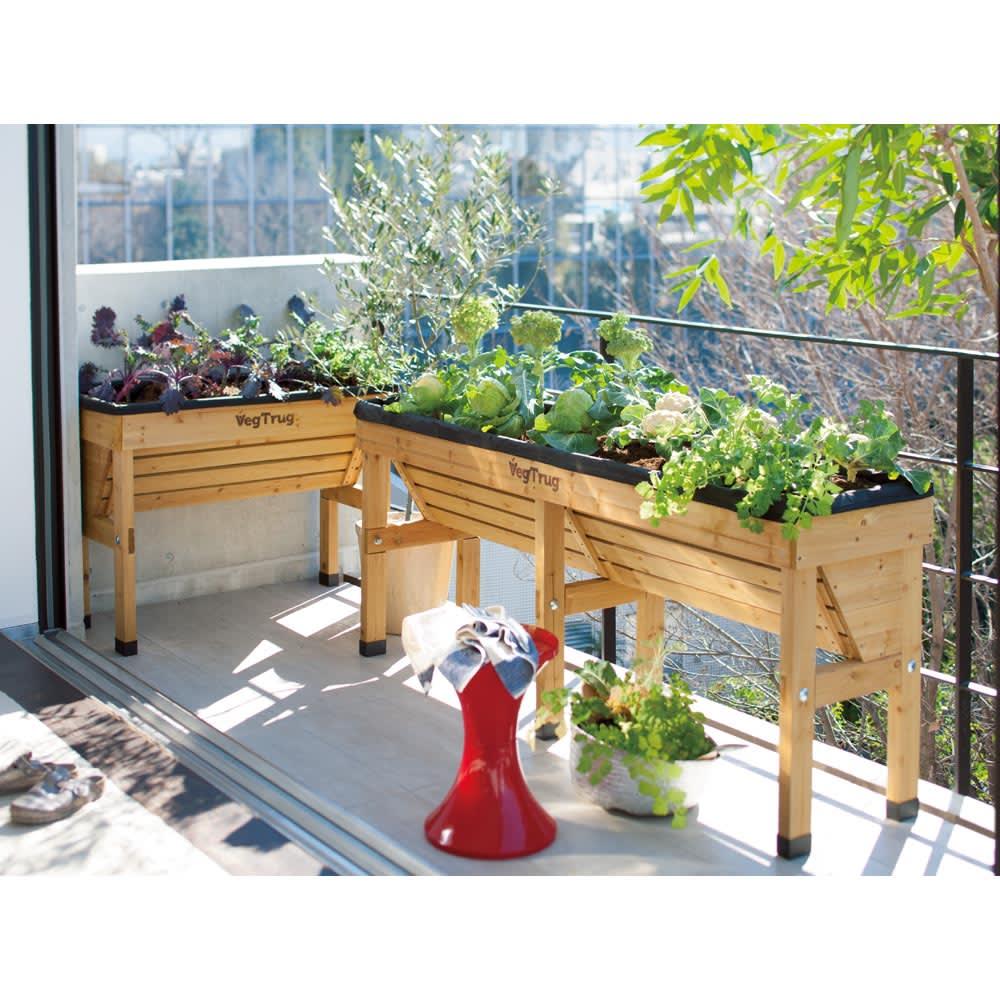 菜園プランター ベジトラグ 省スペースサイズL ナチュラル プランター・鉢・フラワースタンド