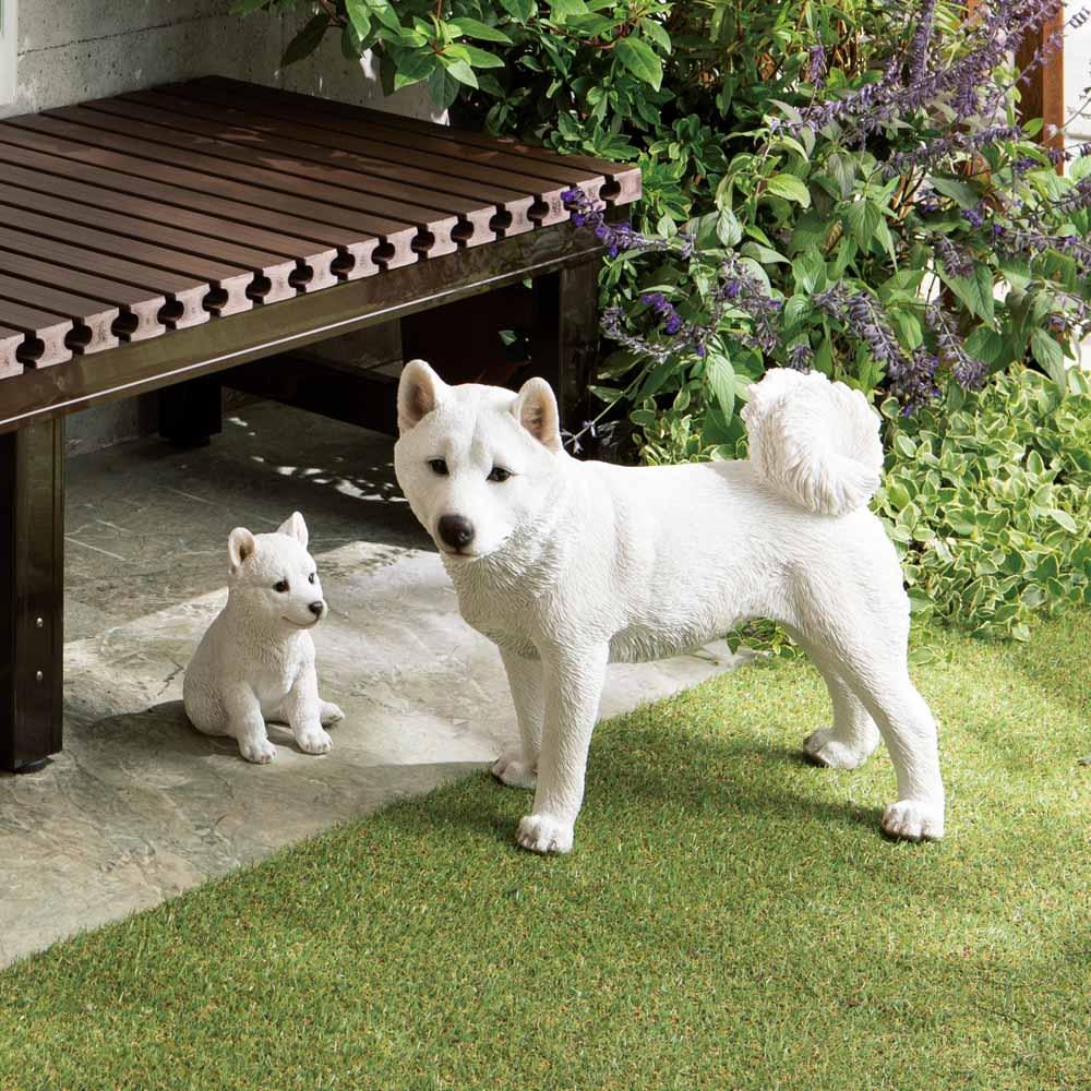 黒柴&白柴犬のオーナメント 白柴 親 ガーデニンググッズ