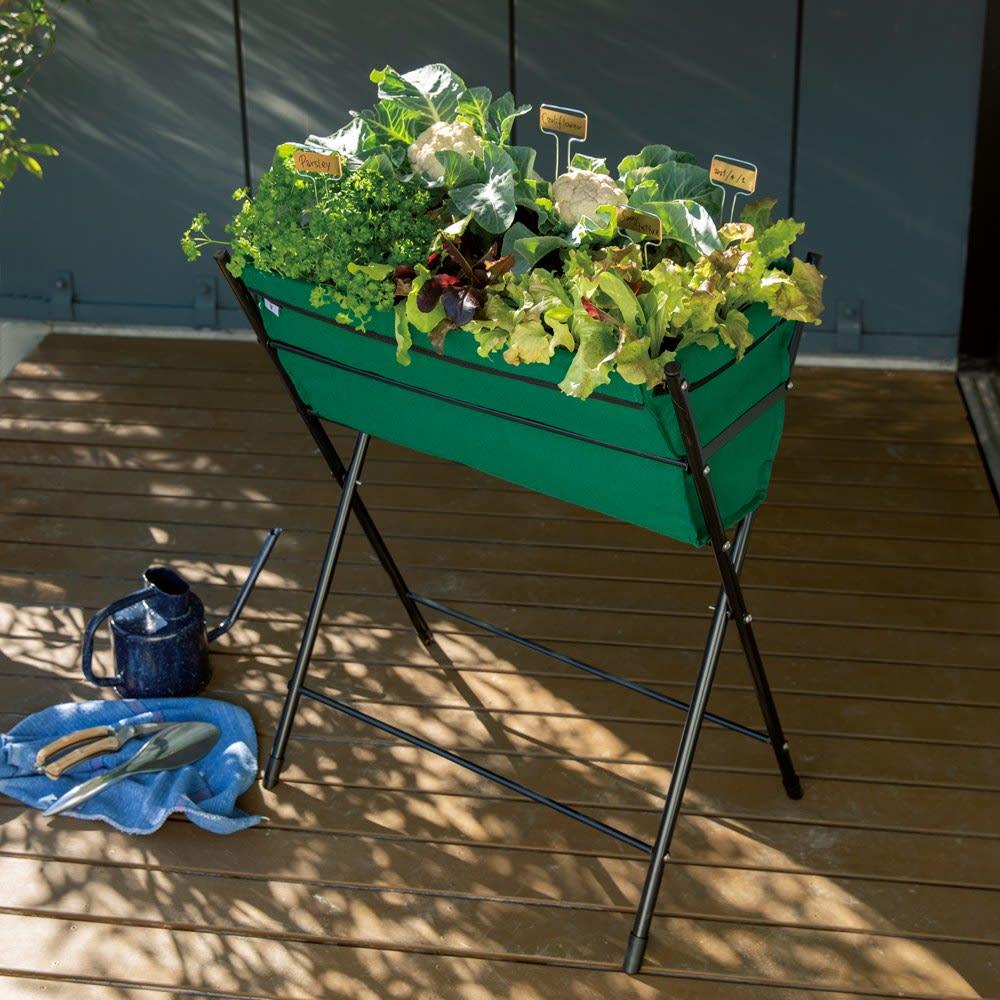 大容量カラーベジトラグ プレート付き (ア)グリーン ベランダやテラスなど土のない場所も、野菜や花のある空間に。立ったまま作業できる高さが魅力。