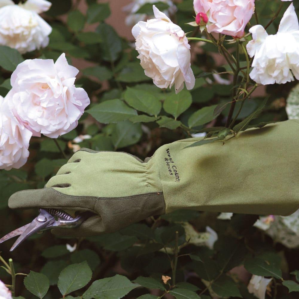 洗える! ロングローズ手袋 (イ)モス ※汗や水などで濡れた状態で強くこすると移染する可能性があります。