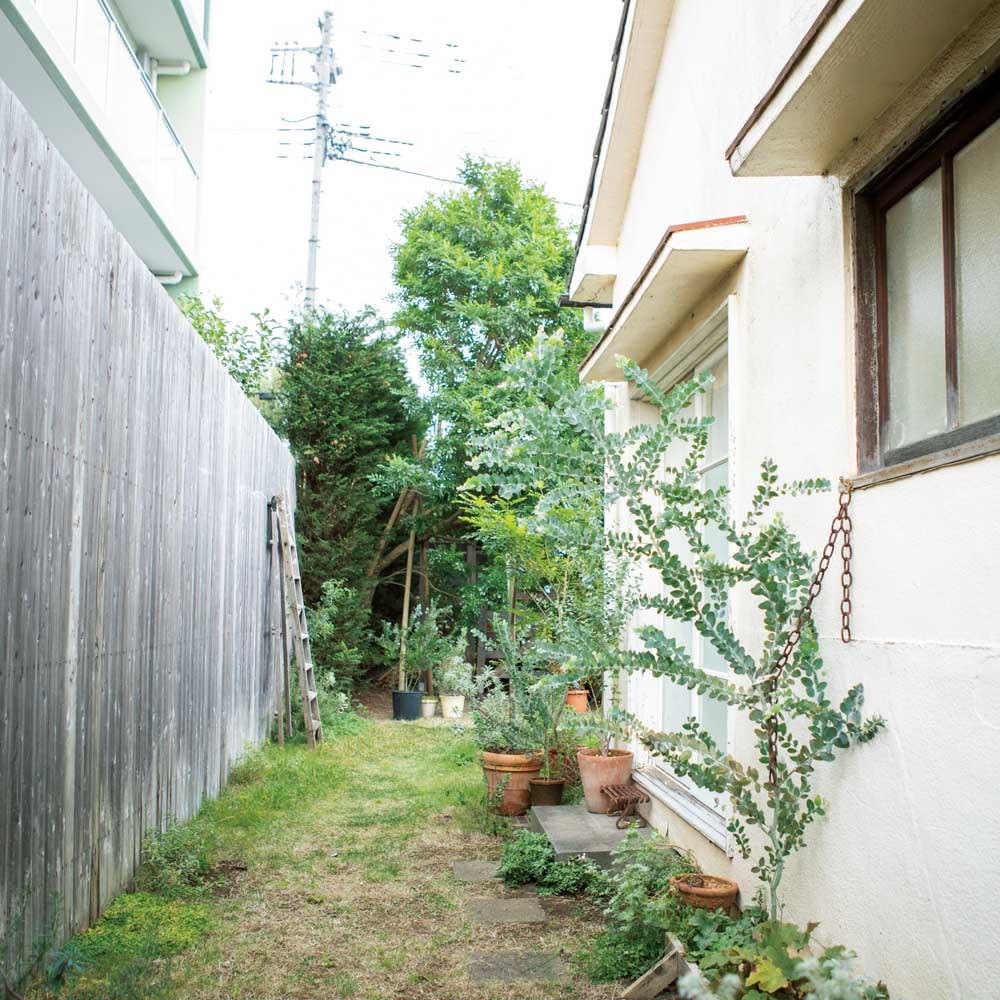 ウォールフラワートンネル お得な2枚組 鉢は置いているものの、園芸をする場所としては活用できていない通路スペース。