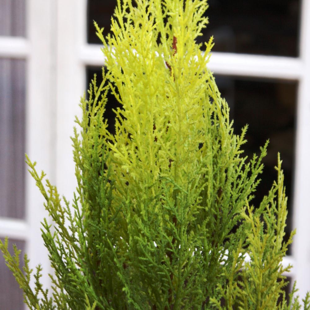 人工観葉植物ゴールドクレスト 180cm お得な2本組 乱れない樹形もインテリアグリーンの魅力のひとつ。