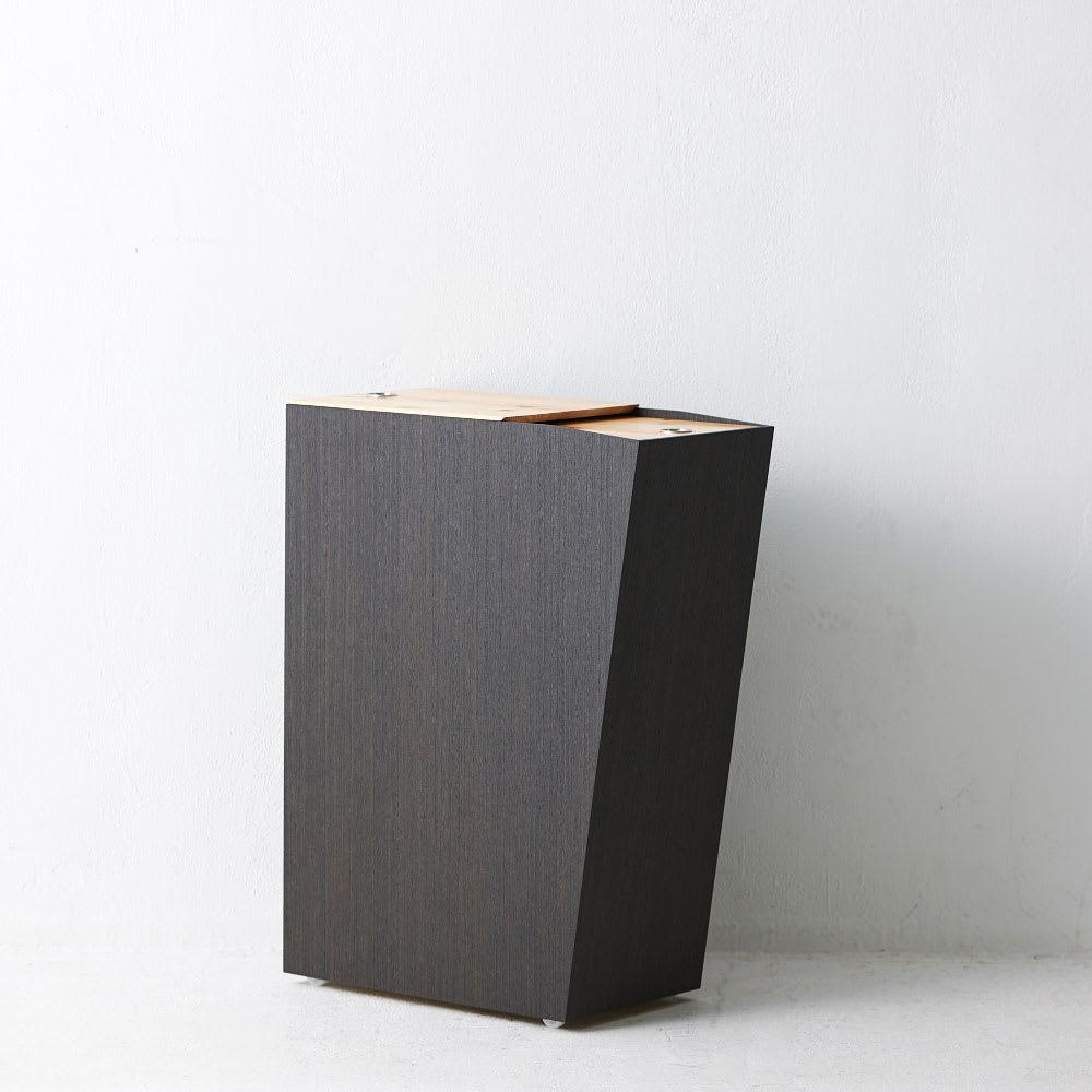 橋本達之助工芸/紀州檜天然木リビングダストボックス容量45L(2分別対応可能) シャープなデザイン