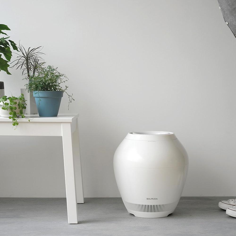 バルミューダ加湿器 RAIN フィルターセット ※フィルターセットのみの販売となります。 画像は、バルミューダレイン本体です。