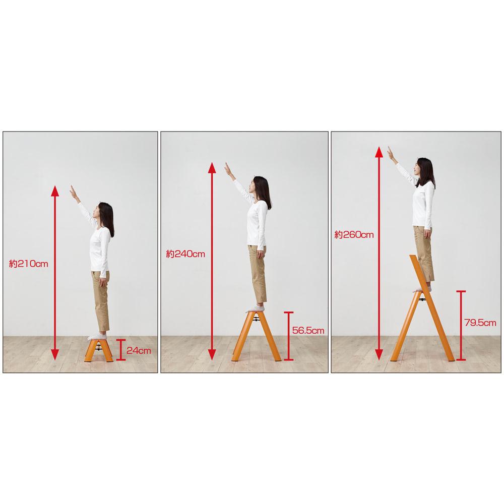 METAPHYS/メタフィス アルミステップ「ルカーノ」 3段 本製品は右。3段タイプです。