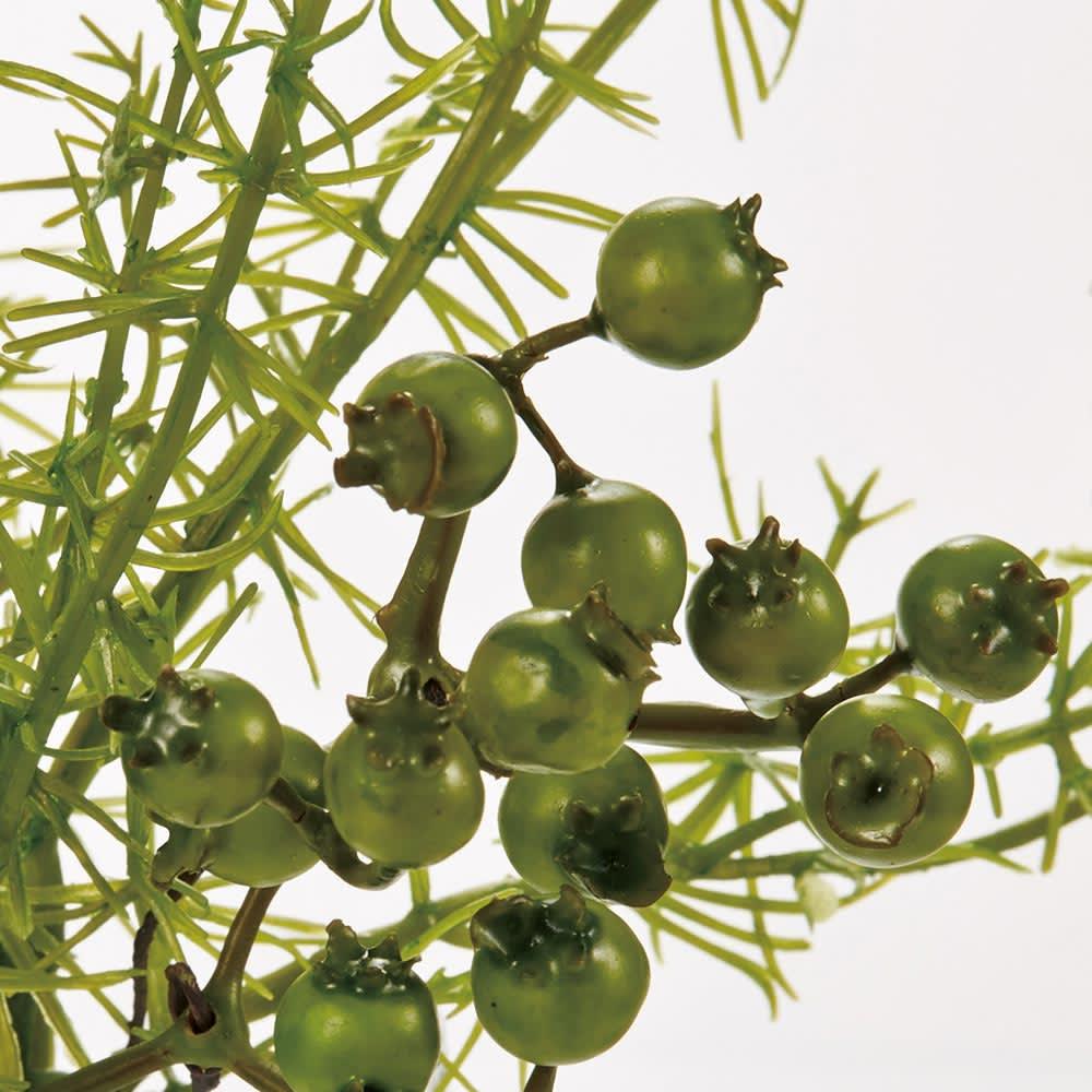 マジックウォーターグラスグリーン お得な大・小セット 「小」 かわいらしいベリーと、甘さを抑えるブランチ(枝)のバランスが絶妙な大人のアレンジメントです。