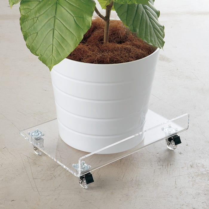 クールスタイル家電・グリーンマルチワゴン ラージ クリアのキャスター付きで、重い観葉植物の鉢などを載せても移動がラクラク。(画像はレギュラーサイズです)