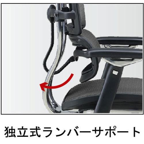 Ergohuman エルゴヒューマンベーシック EH-LAM ヘッドなしタイプ 腰に気持ち良いランバーサポート