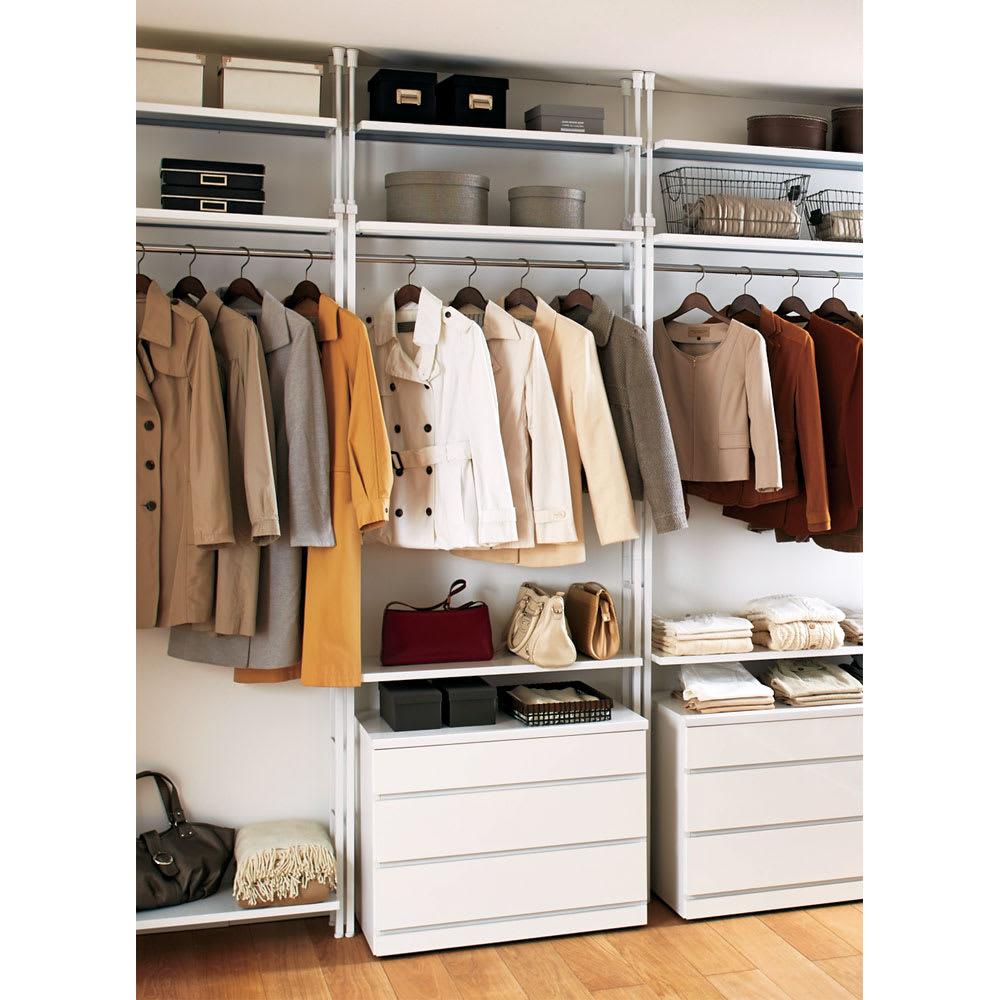 Struty(ストラティ) ラックシリーズ ハンガー2本&棚3段・幅85cm ウォークインクローゼットや寝室におすすめの薄型クローゼットハンガーです。(※本品は中央のハンガーラックです。)