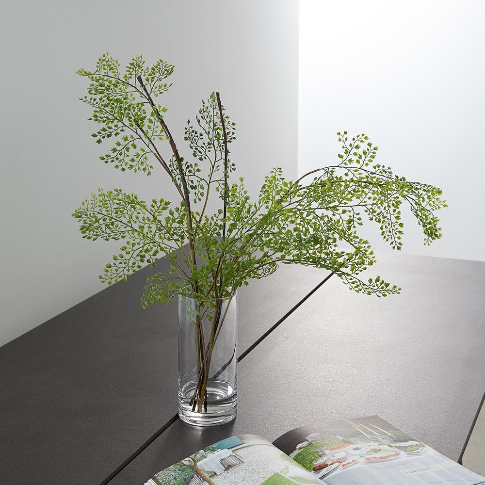 ディノス オンラインショップマジックウォーター使用 インテリアグリーン アジアンタムグリーン