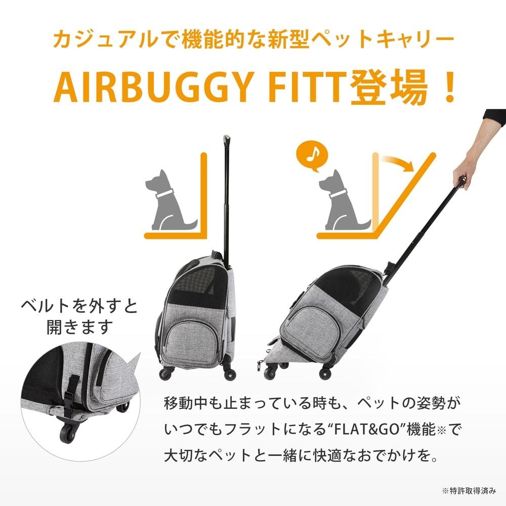 エアバギー Fitt/フィット