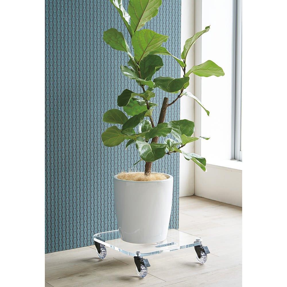 Rollen/ロレン 頑丈アクリル台車 幅58.5cm マルチワゴン 観葉植物のスタンドとしてもおすすめ。 ※写真は幅44.5cmタイプです。