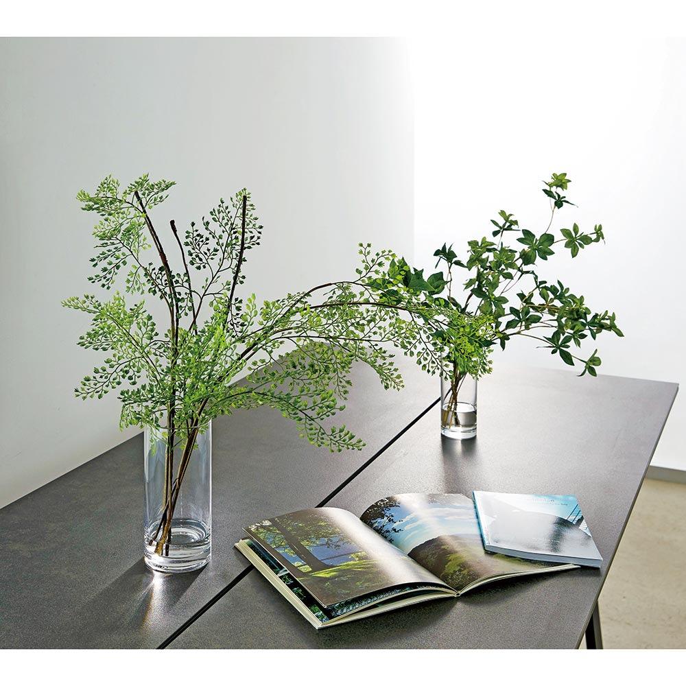 インテリア雑貨 日用品 インテリアグリーン マジックウォーター使用 インテリアグリーン お得な2個セット アジアンタム ドウダンツツジ H86417