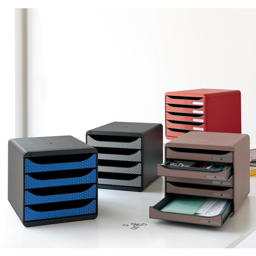 EXACOMPTA エグザコンタ オーストリア製オーガナイザー(ファイルケースに対応) ファイルケース使用時