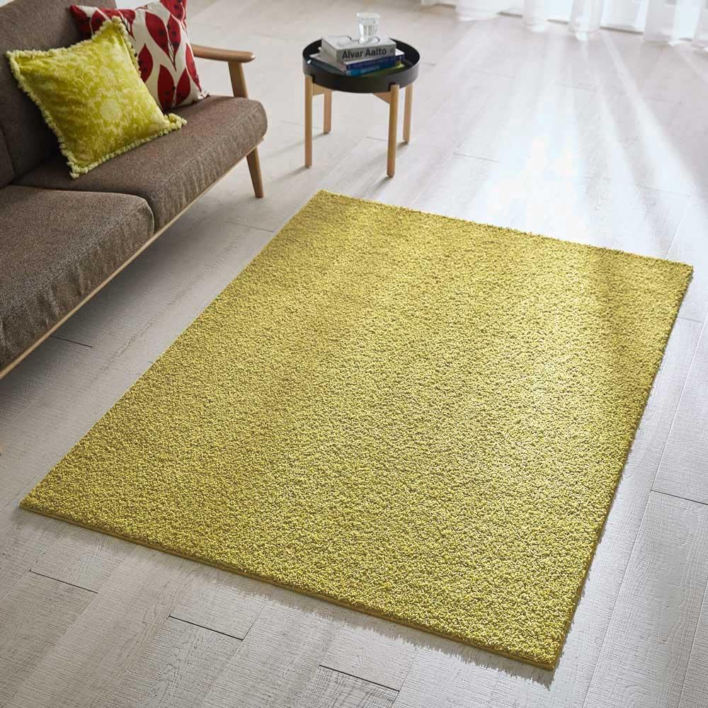 日本製ナイロン100%洗えるツイストシャギー カーペット(3畳~12畳) (ウ)リーフ ※写真は約140×200cmです。