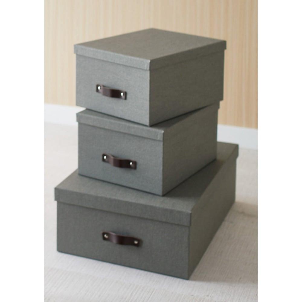 収納ボックス 3個セット[BIGSOBOX/ビグソーボックス]スウェーデン生まれの収納ボックス (イ)グレー