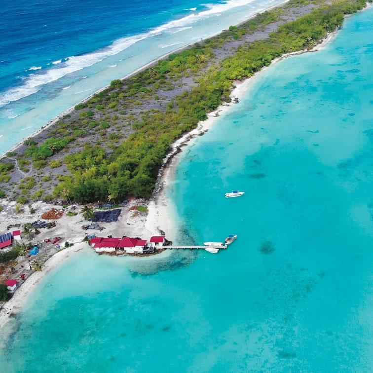 タヒチ リキティア K18 黒蝶パール イヤリング・ピアス サンゴ礁からの成分に加え、外海から豊富なミネラルが流れ込む栄養豊富な海は、養殖に最適。