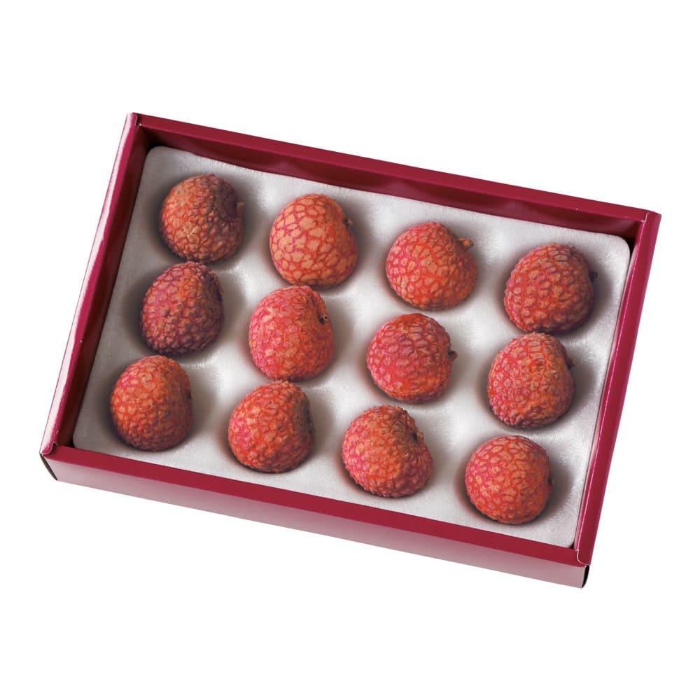 宮崎産 ライチ (約420g) 【通常お届け】 9~12玉(約420g)でお届けします。
