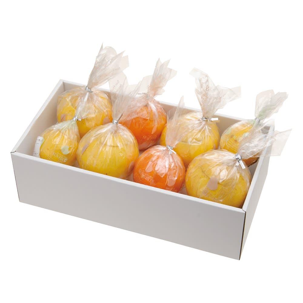 サン・フルーツ フレッシュゼリー (3種 計8個)【通常お届け】