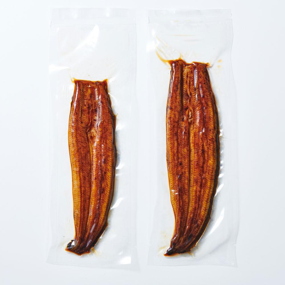 愛知三河産 うなぎ蒲焼(無選別) 500g ご注意:大きさは様々です。枚数も異なります。